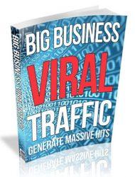 big business viral traffic plr ebook