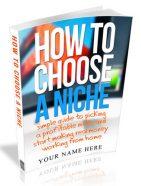 how to choose a niche plr ebook