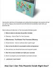 successful-mindset-ebook-mrr-salespage