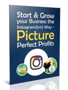 grow your business with instagram plr report