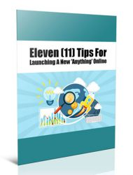 online product launch tips plr report