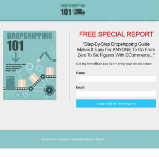 dropshipping success ebook and videos
