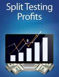 split testing profits plr ebook private label rights Private Label Rights and PLR Products split testing profits plr ebook