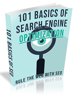 101 Basics of Search Engine Optimization PLR Ebook