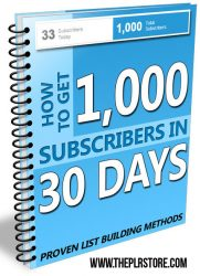 1k-subscribers-in-30-days-mrr-ebook-cover  1000 Subscribers in 30 Days MRR Ebook 1k subscribers in 30 days mrr ebook cover 181x250