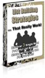 3D-LBS  List Building Strategies PLR 3D LBS 144x250 private label rights Private Label Rights and PLR Products 3D LBS 144x250