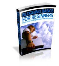 3DBloggingBasics-L  Blogging Basics PLR Ebook 3DBloggingBasics L 190x213