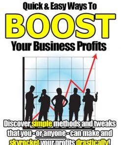 Boost Your Business Profits PLR eBook