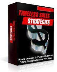 Box-TSS  Timeless Sales Strategies PLR eBook Box TSS 190x239