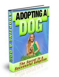 adopting a dog plr ebook adopting a dog plr ebook Adopting a Dog PLR Ebook adopting a dog plr ebook cover 190x250