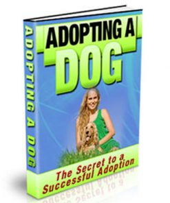 adopting a dog plr ebook