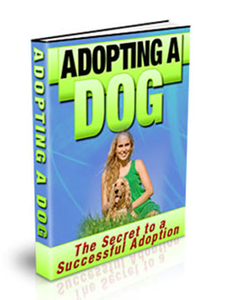 adopting a dog plr ebook