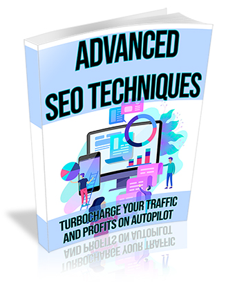 Advanced SEO PLR Ebook
