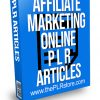 Affiliate Marketing Online PLR Articles