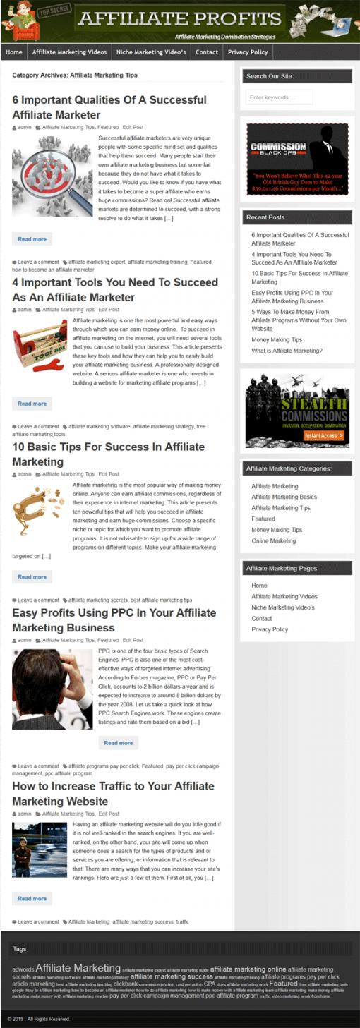 Affiliate Marketing PLR Website