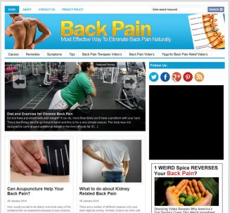 Back Pain PLR Website with Private Label Rights back pain plr website private label rights cover 327x303