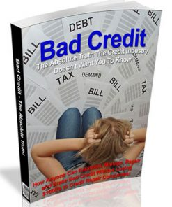 Bad Credit PLR eBook