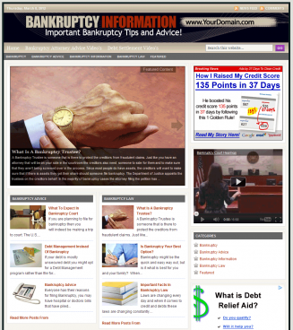 Bankruptcy PLR Website with Private Label Rights bankruptcy plr website main page 327x368