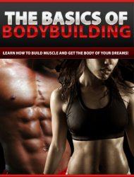 basics of bodybuilding plr ebook