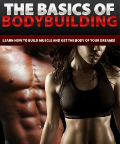 basics of bodybuilding plr ebook