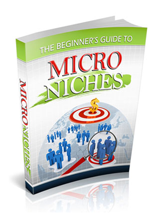 beginners guide to micro niches plr ebook
