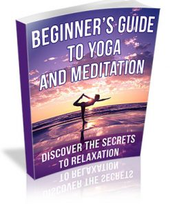Beginner's Guide to Yoga and Meditation PLR Ebook