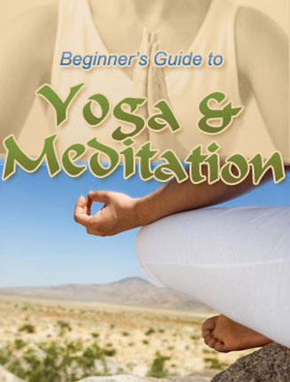 beginners guide to yoga and meditation plr ebook