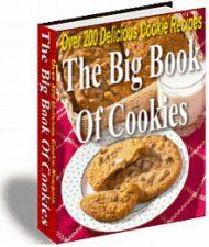 big-book-of-cookies-plr-cover  Big Book Of Cookies PLR Ebook big book of cookies plr cover 190x225