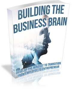 Building the Business Brain PLR Ebook