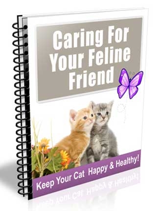 Caring For Your Cat PLR Autoresponder Messages