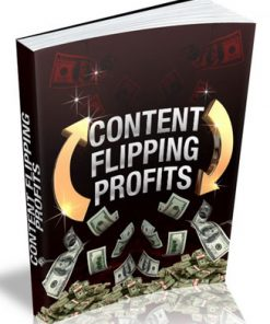 content flipping plr ebook
