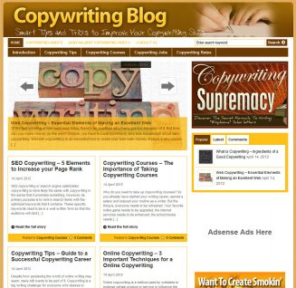 Copywriting PLR Website with Private Label Rights copywriting plr website main page 327x318