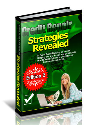 Credit Repair Strategies Revealed PLR eBook