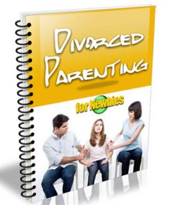 divorced parenting for newbies plr ebook