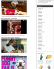 dog-gifts-plr-amazon-store-videos