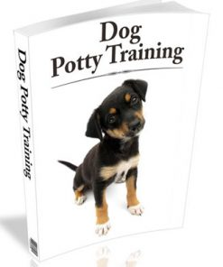 dog potty training plr ebook