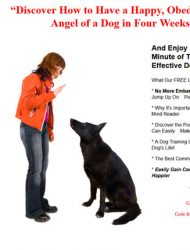 dog training plr autoresponder messages dog training plr autoresponder messages Dog Training PLR Autoresponder Messages dog training plr autoresponders messages 190x250