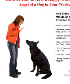 dog training plr autoresponder messages