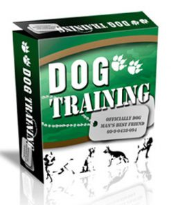 dog training plr website template