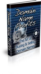 domain-name-profits-plr-ebook-cover  Domain Name Profits PLR eBook domain name profits plr ebook cover 140x250