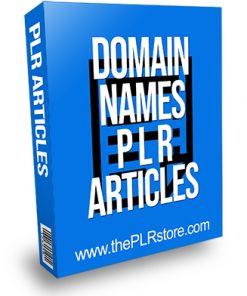Domain Names PLR Articles