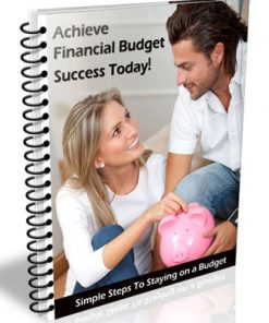 financial budget plr list building