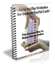 flipping-websites  How To Flip Websites PLR Ebook flipping websites 190x233
