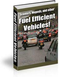 fuel-efficient-vehicles-ebook-cover  Fuel Efficient Vehicles PLR eBook fuel efficient vehicles ebook cover 190x246