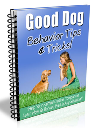 good dog training plr autoresponder messages