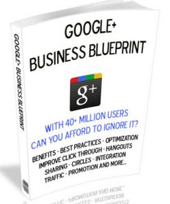 google+ business blueprint plr ebook
