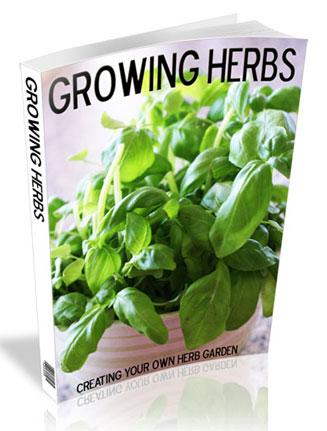 growing herbs plr ebook