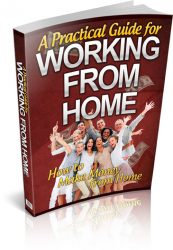 guide-for-working-from-home-plr-ebook-cover  Guide For Working At Home PLR Ebook guide for working from home plr ebook cover 173x250