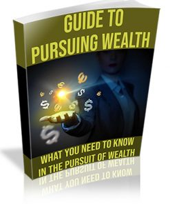 Guide to Pursuing Wealth PLR Ebook