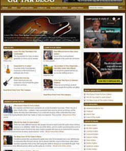 guitar plr website